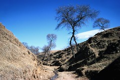 Landscape Province Inner Mongolia (Frühtau) Tags: желе́зная доро́га china landscape countryside mountains mongolia mongolian asia asian province chine innere mongolei 内蒙古自治区 nèi měnggǔ zìzhìqū пекин peoples republic 中华人民共和国 中国 pinyin chūn jié 春节 dorf öbür mongɣulun öbertegen jasaqu orun outdoor