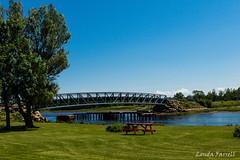 Trans Canada Trail (londa.farrell) Tags: park bridge summer canada water grass canon picnic outdoor path july trail newbrunswick daytime recreation canondslr tidal portelgin picnictable 24105 2016 northumberlandstrait canoneos7dmarkii