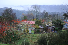 Owhango Village Central Plateau King Country North Island New Zealand (eriagn) Tags: pacificocean newzealand northisland centralplateau tongarironationalpark volcanic quail marae bellcrosswooden crosseriagnngaire hartte kootihistorical site backroad history shed owhango maintrunkline kingcountry winter overcast rain bestofflickrsbest