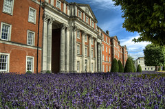 Lavender at the Peninsular Barracks in Winchester (neilalderney123) Tags: flowers architecture lavender olympus hampshire winchester barracks peninsularbarracks 2016neilhoward