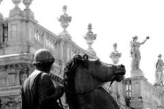 IMG_20160724_1618_003_ff (fabri192020) Tags: blackandwhite monocromo biancoenero torino architecture architettura statue monumenti piazzacastello