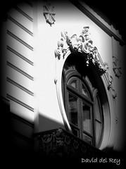 Window 1 (David del Rey78) Tags: laorotava tenerife canarias corpuschristi paisaje tradicin costumbre arte window ventana design architecture diseo antao blackandwhite monochrome