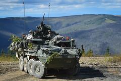 160723-F-LX370-192 (U.S. Department of Defense Current Photos) Tags: 15in 25thid soldier stryker training usa yukontrainingarea alaska unitedstates us