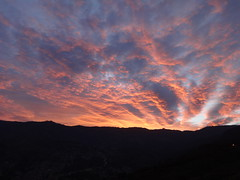 DSC01885 (Dave_Collins) Tags: morning am medellin colombia sony waking up clouds sun love landscapes sky cat