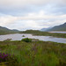 """2016-07-11-21h11m56-Schottland • <a style=""""font-size:0.8em;"""" href=""""http://www.flickr.com/photos/25421736@N07/28692247691/"""" target=""""_blank"""">View on Flickr</a>"""