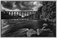 Leaderfoot_Mono (Jistfoties) Tags: rivertweed bridges scottishborders drygrange leaderfootviaduct landscape scotland top20bridges