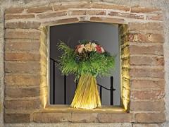 detalle (Pak) Tags: ramo flor seca detalle bodegon luz centrada