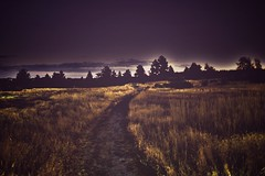 Walks at Sunrise (miss.interpretations) Tags: sunrise purple stroll walk path fields canonm3 castlerock colorado