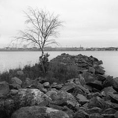 Hasselblad_253 (Timo Alatalkkari) Tags: hasselblad carlzeiss planar 80mm ilford delta id11 cityscape city landscape