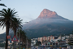 the road to the top (_Maganna) Tags: cape town south africa outdoors outside sunset nikon palm tree street cars mountain seaside beach light