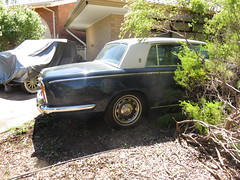 ID that Rolls Royce! (RS 1990) Tags: adelaide southaustralia thursday 13th october 2016 teatreegully modbury 1980s rollsroyce car sedan