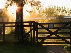 Atardecer en la quinta (Letua) Tags: atardecer contraluz tranquera naturaleza aire linre dorado sunset backlight golden light silueta silhouette