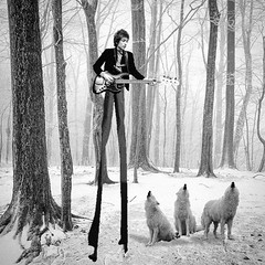 Dylan and the Wolves (Flamenco Sun) Tags: mad odd weird stilts howl surreal wolves snow bobdylan dylan