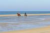 Freedom (JnHkstr) Tags: ameland fotoclub fotoclubgespot gespot strand hollum paarden horses beach wadden freedom vrijheid zondagmorgen