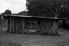 Abandoned Shack (Montiel Photo Atelier) Tags: landscape blackwhite costarica ilfordhp5 canoneos3 filmphotography landscapephotography epsonv700 rondinax rondinax35