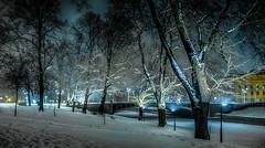30.12.2014   Tiistaiaamu Tuesdaymorning  Turku bo Finland (rkp11) Tags: morning schnee winter snow cold ice suomi finland vinter frost december turku hiver nieve nevada freezing neve tuesday icing invierno neige dezember snowfall lumi inverno talvi zima dicembre  sn hdr diciembre dcembre nieg nevicata aurajoki 2014 j icecold bo 12 schneefall   aura  aamu  joulukuu kylm  grudzie  pakkanen  icebound  jinen 12 snfall  chutedeneige  tiistai  southwestfinland  hdrefexpro2 lightroom5 opadyniegu 30122014