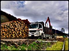 MAN TGS 33.540 L 6x4 - KRIPPENDORF - OE-K3100 - D (5) (PS-Truckphotos) Tags: man truck germany deutschland europa europe sweden timber d schweden lorry fotos l trucks sverige stm tyskland meet trucking niederlande tgs belgien lastwagen lkw strngns 2015 lastbil 6x4 bjrkvik 33540 woodtruck krippendorf supertrucks langholz holztransport truckpics truckspotter truckspotting lasbil truckphotos truckmeet timbertruck showtrucks truckfotos truckfoto lkwfotos kurzholz pstruckphotos 07112014f900 oek3100 strngnstruckmeet lkwpics lastwagenfotos lastwagenbilder