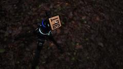 3 Legged Thing goes Walkies in the Woods (GOR44Photographic@Gmail.com) Tags: wood leaves tripod fujifilm airhead wgc ah2 3lt xpro1 sherrards 3leggedthing 18mmf2 gor44