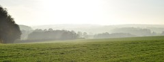 Chartham Downs (Aliy) Tags: charthamdowns chartham downs kent mist misty autumn field tree rural bucolic countryside panorama