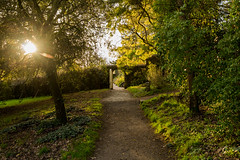 Cotehele (1 of 1)-9 (trevorhicks) Tags: autumn trees plants sun house canon garden cornwall arch path national trust flare gateway tamron cotehele 700d