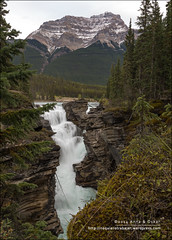 Athabasca Falls, Jasper National Park (Alberta) (Anna & Oskar) Tags: travel viaje canada water canon landscape waterfall agua paisaje can canyon alberta jaspernationalpark jasperparklodge cascada caon canadianrockies 1dx montaasrocosas 5dmarkii