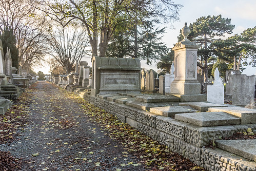 Mount Jerome Cemetery & Crematorium is situated in Harold's Cross Ref-100449