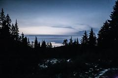 Twilight Hike Hollyburn Dec.5.2014 - 33