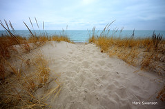 To the Sea - Explore (mswan777) Tags: sky cloud seascape beach nature water grass sand nikon michigan great lakes sigma 1020mm polarizer d5100
