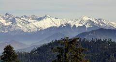 Himalayas (mala singh) Tags: india snow mountains shimla himalayas himachalpradesh narkanda