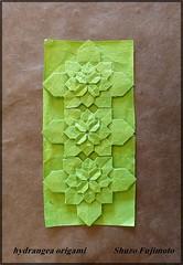 3 hydrangea, Shuzo Fujimoto. (ebesan2000) Tags: paper origami hydrangea papier fujimoto lokta shuzo