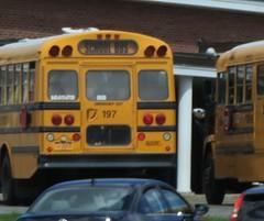 Goshen CSD #197 (ThoseGuys119) Tags: schoolbus orangecounty conventional blackhood freightliner goshenny thomasbuilt fs65 goshencsd
