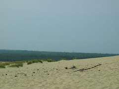 Dunes of the Curonian Spit