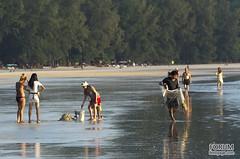 XOKA0691s (forum.linvoyage.com) Tags: nature thailand island outdoor koh         phayam