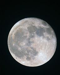 lune-saturée