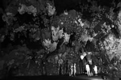 Grutas de Loltn (Thomas Roland) Tags: travel summer nature america mexico state sommer central yucatan tourist cenote cave amerika peninsula grutas grotte gruta mrida hule oxkutzcab loltn mellemamerika