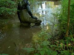 IM004012 (hymerwaders) Tags: wet mud waders schlamm nass watstiefel