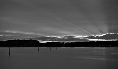 Every Cloud............ (hall1705) Tags: longexposure sunset sky sun water marina mono blackwhite westsussex dramatic beam rays treeline chichester silverlining d3200 everycloud