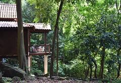 I wish if I were a writer... (Rekha Prasad) Tags: malaysia langkawi berjayaresortlagkawi rainforest challet chalet rainforestchaletlangkawi berjayarainforestchalet malaysiaattractions malaysiatrulyasia awesomeplacesinmalaysia enjoyyourholidaysinmalaysia nature landscape nikon d3300 greatholidaydestinationsinmalaysia