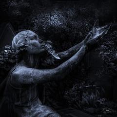flickr le forme  del verano 2 (cuvato rocco) Tags: roma statue verano sculture viraggio cimitero roccocuvato