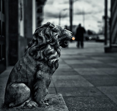 Street cat (Varvara_R) Tags: blackandwhite bw sculpture monochrome noiretblanc moscow lion center historical appicoftheweek