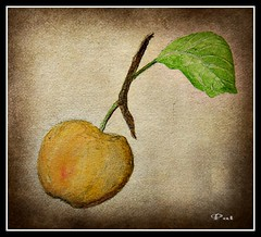An apple (patrick.verstappen) Tags: watercolor painting painted paintng art nutwater apple fruit texture textured photo picassa pinterest pat picmonkey paper pencil pen ipernity ipiccy inspiration inkt yahoo belgium nikon d7100 sigma