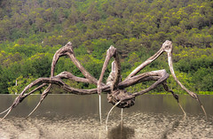 strange spider (feelnoxx) Tags: provence art sculpture chateaulacoste