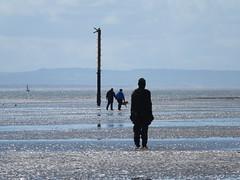 DSCF0695 (SierPinskiA) Tags: sea shells beach liverpool sand ironman pools barnacles ironwork mayday seashore merseyside anthonygormley irishsea 2016 anotherplace crosbybeach blundellsands fujixs1