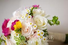 buchet-de-mireasa-cu-flori-de-musetel-si-trandafiri (IssaEvents) Tags: buchet mireasa cu bujori si flori de musetel valcea slatina bucuresti issaevents issamariage