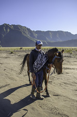 Horse Contractors (narenrit) Tags: bromo mountain mist light sun sunrise cloud sky morning valcano tree view beauty hill top scenic indonesia tropical asia asian east cliff travel trip mount sapatate different village country