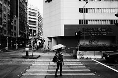 _R081053 (monsteres) Tags: kowloonbay  hongkong