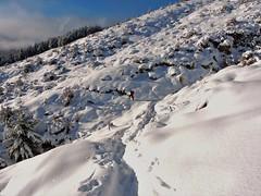 Time to return (flashmick) Tags: bruce mountains canterbury canterburynz newzealand southisland snow walking hiking tramping morning winter august 2016