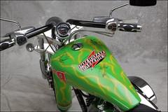 bikes-2009world-079-d-l