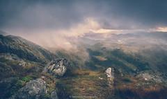 View from Mt. Ulriken (Steinskog) Tags: