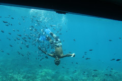 IMG_4064_Hurghada 2016 the best of (Adam Is A D.j.) Tags: hurghada red sea egypt 2016